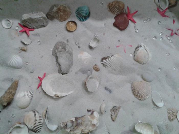 Na dnie morza 2014 (02)