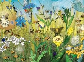 pszczoły-bajerowicz